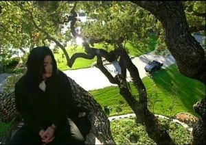 Michael Jackson's Giving Tree. Image taken from mjcommunity.com.